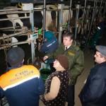 Для увеличения производства молока