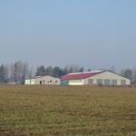 В Глусском районе 5 ноября введена в эксплуатацию новая МТФ