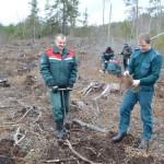 В Глусском районе проходит добровольная акция «Неделя леса»