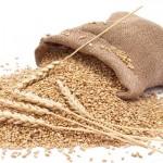 Предельные максимальные цены на отдельные виды сельхозпродукции для госнужд увеличены в Беларуси