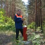 Навигатор помогает лесоводам