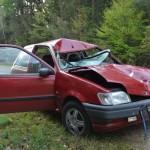 Автомобиль «Форд», за рулем которого находилась жительница Глуска, столкнулся сегодня утром с лосем