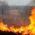 И снова горит трава