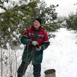 В сосновых владениях Мороза