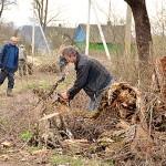 Возрождение деревни начинается с уборки