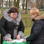 Выборы в местные Советы