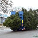 В Глуске устанавливают новогоднюю елку